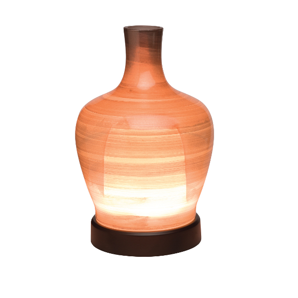 Evolve Natural Oil Diffuser